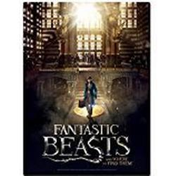 Wrebbit 3D(TM) Fantastic Beasts / MACUSA 500 Teile: 2D/PUZZLE