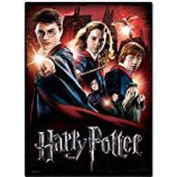 Wrebbit 3D(TM) Harry Potter Poster Puzzle HOGWARTS SCHOOL 500 teile: 2D/PUZZLE