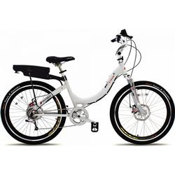 Trade Line Partner Mountain e-Bike Prodeco Stride R300