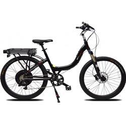 Trade Line Partner Mountain e-Bike Prodeco Stride R500