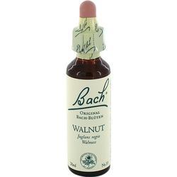BACHBLÜTEN Walnut Tropfen 20 ml