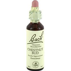BACHBLÜTEN Chestnut Bud Tropfen 20 ml