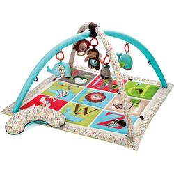 Skip Hop - Activity Gym (22033-3) - ABC
