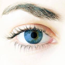 Weflex 55 color - farbige Jahreslinsen