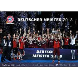 Basketball Poster Dt. Meister 2018