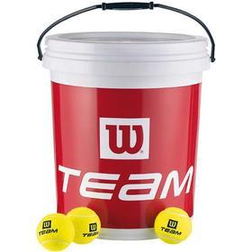 Wilson Trainer Team Ball 72 Box