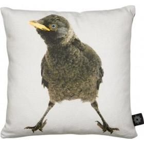 By Nord Baby Jackdaw Cushion 30x30cm
