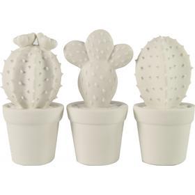 Barbara Hvide keramik kaktuser