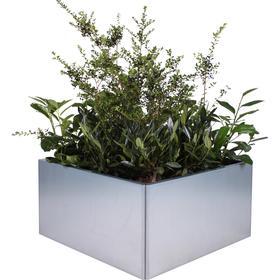 Land Modern 80 x 80 cm planteringskärl - robust planteringslåda i en klassisk design