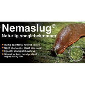 Nemaslug Natural Slug Killer 30m