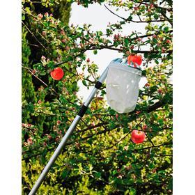 Frugtplukker Med Teleskopskaft 5709386978136