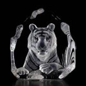Mats Jonasson Bengalisk Tiger