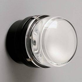 Væglampe med glaslinse Fresnel, sort, IP44