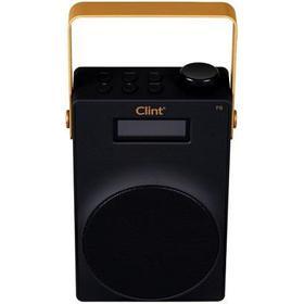 Clint F6