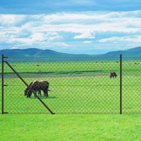 vidaXL Chain-Link Fence Set with Posts 15mx197cm