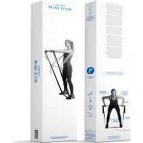Swedish Posture Mini Gym