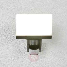 Steinel XLED home 2 Udendørsbelysning