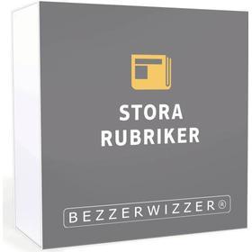 Bezzerwizzer Bricks – Stora Rubriker
