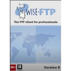 ACEBIT WISE-FTP 8