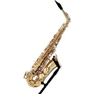 P.Mauriat PMSA-76 GL Alto Saxophone