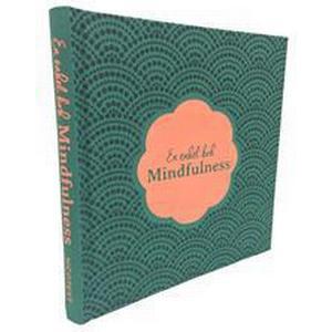 En enkel bok - mindfulness (Klotband, 2015)