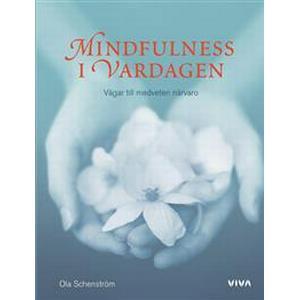 Mindfulness i vardagen: vägar till medveten närvaro (Inbunden, 2007)