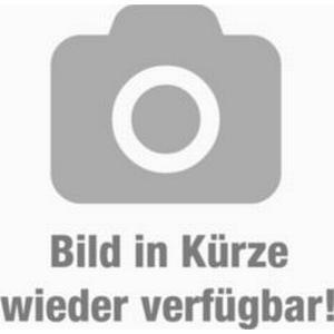 10 Stk. Prunus lauroc. &acuteRotundifolia&acute - (Kirschlorbeer &acuteRotundifolia&acute), Containerware 80-100 cm