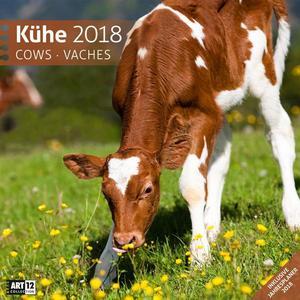 Ackermann Kunstverlag Kühe 30×30 2018 / Kalender