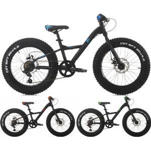 20 Zoll Cinzia XX Fat Jungen Mountainbike 6-Gang