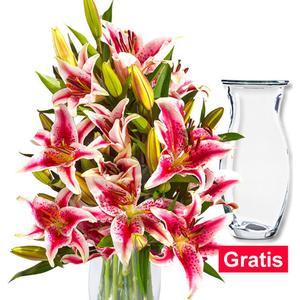 10 rosa-weiße Lilien mit Vase