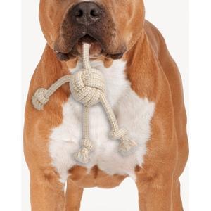 - ZooRoyal Hundespielzeug Nature Line Ball mit Knoten