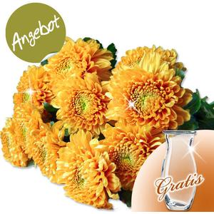 10 orange Deko-Chrysanthemen mit Vase
