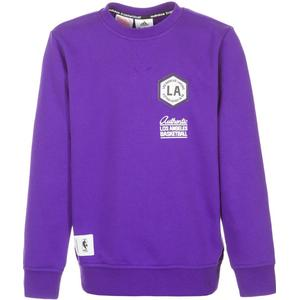 adidas Performance Los Angeles Lakers Washed Crew Sweatshirt Kinder