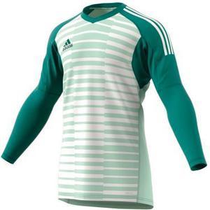 Adidas Adipro 18 Torwarttrikot Herren - grün