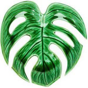 &klevering Monstera Blatt Platte klein grün 20 cm Grün