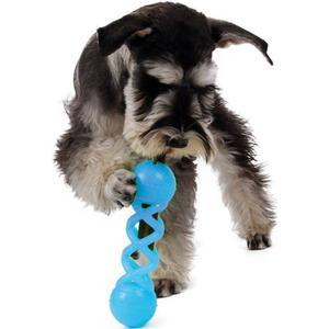 - ZooRoyal Hundespielzeug Dental Kaustange 20cm