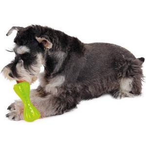 - ZooRoyal Hundespielzeug Dental Knochen grün