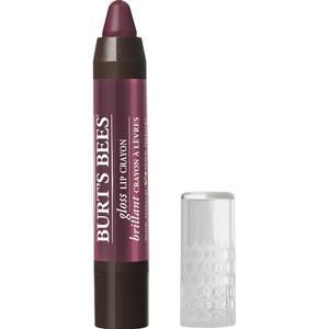 Burt's Bees Gloss Lip Crayon Bordeaux Vines