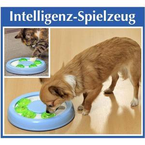 - Intelligenz- Spielzeug