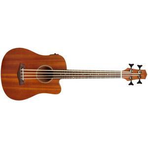 Gold Tone Micro Bass 23 LH