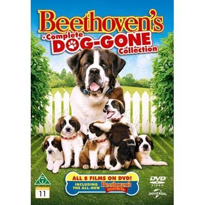 Beethoven 1-8 box (DVD 1992-2014)