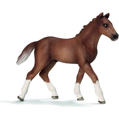 Schleich Hanoverian Foal 13730
