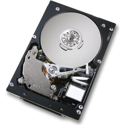 Hitachi Ultrastar 15K147 0B20875 73GB