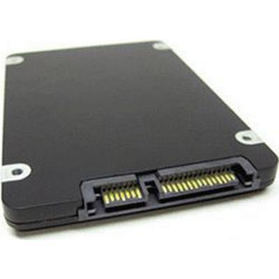 Fujitsu 256GB / SATAII (S26361-F3576-L100)