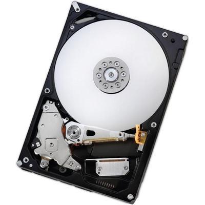Hitachi Deskstar Nas H3IKNAS600012872SE 6TB