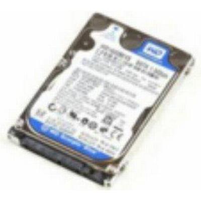 MicroStorage IB750001I131S 750GB