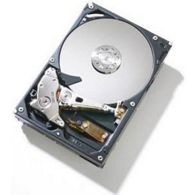 Fujitsu S26361-F4482-L530 300GB