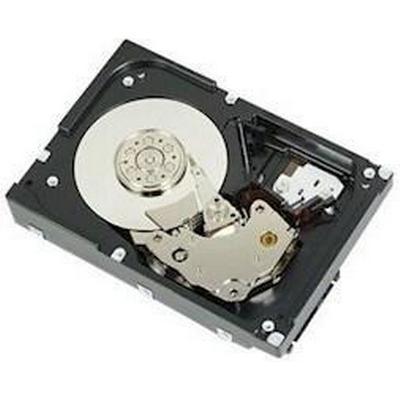 Dell Near Line 400-20628 2TB