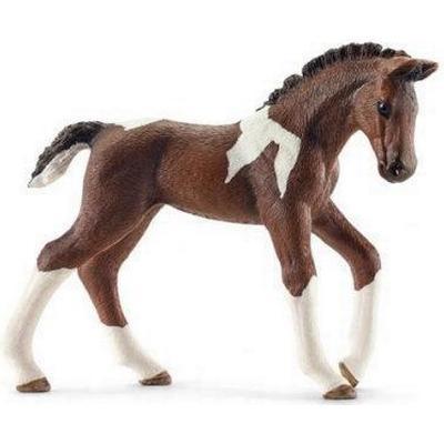 Schleich Trakehner foal 13758