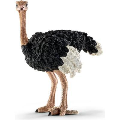 Schleich Ostrich 14744